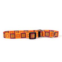 Orange Blocks Martingale Dog Collar