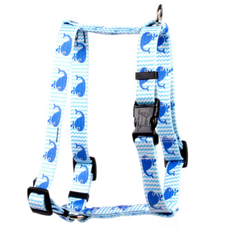 """Sweet Lil Whales Roman Style """"H"""" Dog Harness"""