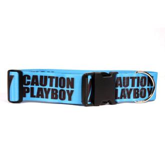 2 Inch - Caution Playboy Dog Collar
