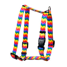 "Rainbow Chevron Roman Style ""H"" Dog Harness"