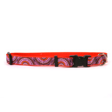 Radiance Purple on Orange Grosgrain Ribbon Collar