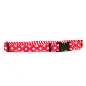 Strawberry Polka Grande on Chevron Grosgrain Ribbon Collar