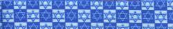 Hanukkah Stars Waist Walker
