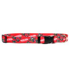 Florida Panthers Dog Collar