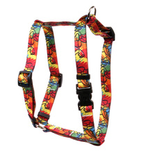 "Jazz Paint Roman Style ""H"" Dog Harness"