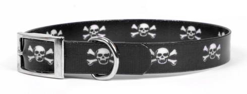 Skulls Elements Dog Collar