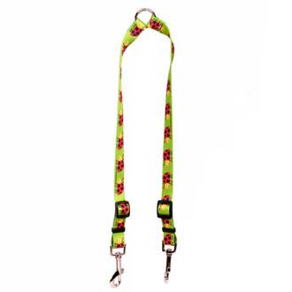 Lovely Ladybugs Coupler Dog Leash