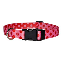 Valentine Polka Dot Break Away Cat Collar