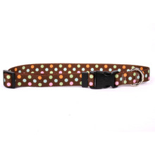 Neopolitan Break Away Cat Collar