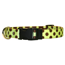 Green and Brown Polka Dot Break Away Cat Collar