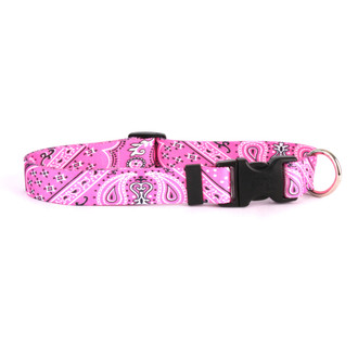 Bandana Pink Break Away Cat Collar