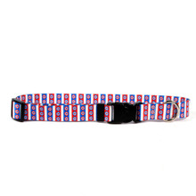 American Daisy Break Away Cat Collar
