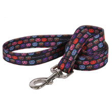 Cat Faces Dog Dog Leash