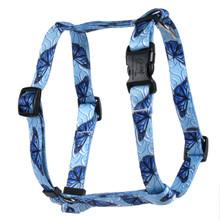 Blue Butterfly Swirl Roman Style H Dog Harness