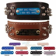 Brutus Name Plate Leather Dog Collar