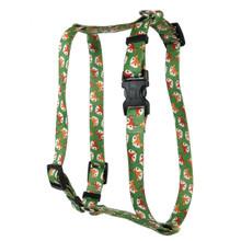 FOXY Roman Style H Dog Harness
