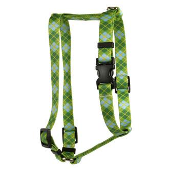Argyle Green Roman Style H Dog Harness