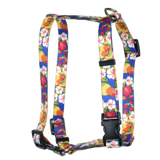 Lovebirds Roman Style H Dog Harness