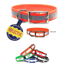 REFLECTIVE SunGlo All Weather Dog Collar