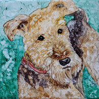 Dog Tile  Airedale