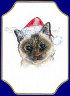 Christmas Siamese cat