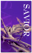 3x5 Purple Crown Savior Church Banner