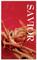 3x5 Red Thorns Savior Church Banner