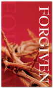 3x5 Red Thorns Savior Church Banner