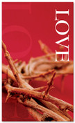3x5 Red Thorns Love Church Banner