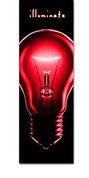 EC022 Illuminate Red Bulb