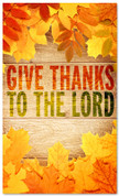 Give Thanks Leaves - Fall- HB012 xw