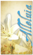 easter lilies blue banner