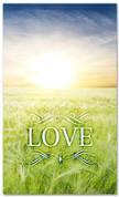 E012 Love -xw