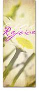 3x8 E029 Rejoice