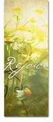 3x8 E039 Rejoice