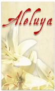 SB106 - Aleluya