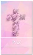 SB122 - PAZ