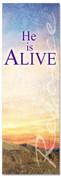 3x8 E087 He is Alive