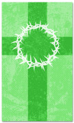 3x5 Patterned Church banner - Green Striped Crown of Thorns