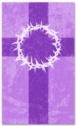 3x5 Purple Striped pattern Church banner - Crown of Thorns