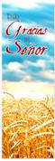 Fall Harvest Spanish banner for church - Dar Gracias al Senor