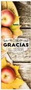 Spanish fall harvest church banner - dar gracias al senor