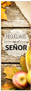 Rejoice in the Lord - Spanish banner for churches