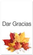 Fall Harvest Spanish church banner - Dar Gracias