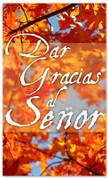 Spanish thanksgiving church banner - Give thanks