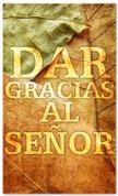 Dar gracias al Senor - Fall leaves Spanish banner