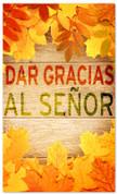 Dar gracias al Senor - Thanksgiving Spanish banner