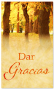 Dar gracias - harvest Spanish banner for church