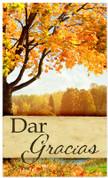 Dar gracias - Fall harvest Spanish banner