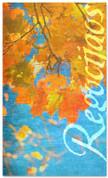 Spanish fall harvest banner - Rejoice